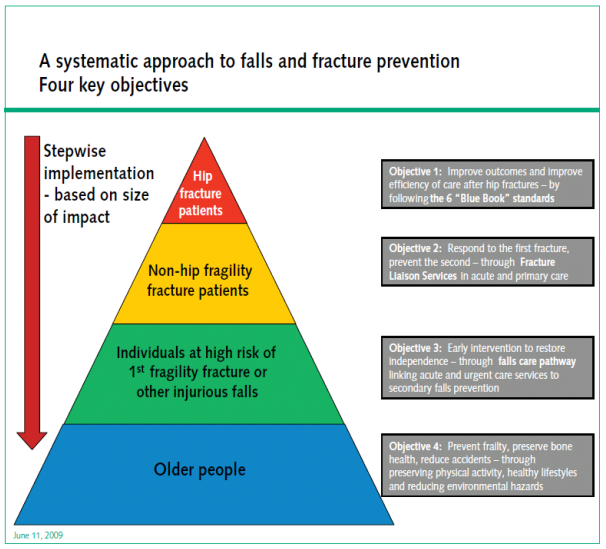 Figure 1: Department of Health: Systematic Approach to Falls and Fracture Prevention.