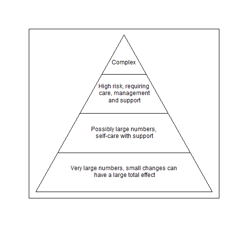 Figure 1: A pyramid of health and social care needs
